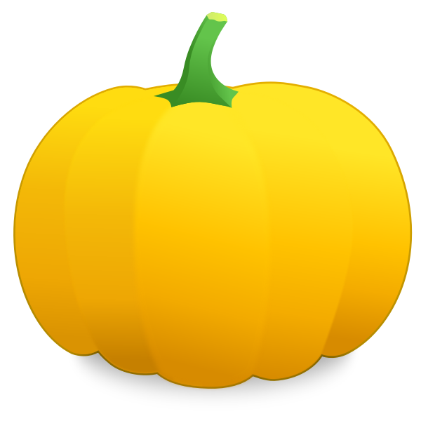Yellow pumpkin vector image