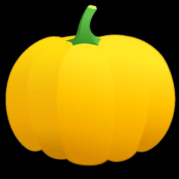 Yellow pumpkin vector image