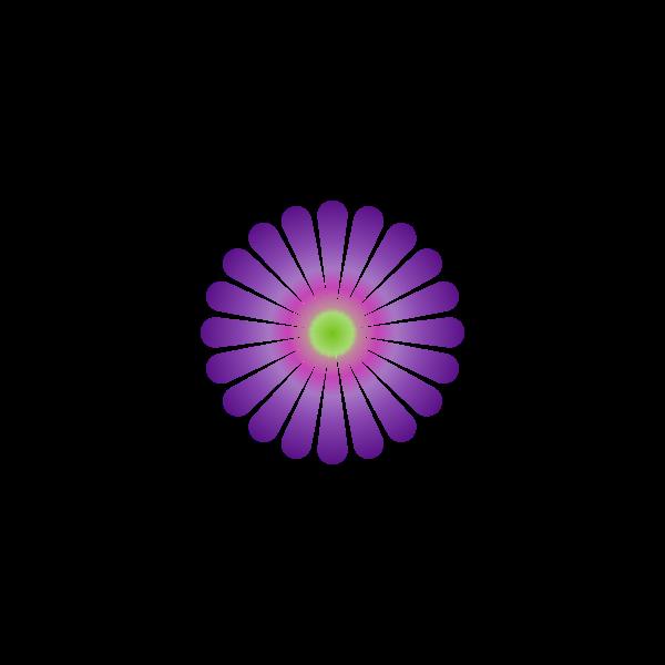 Purple Daisy 20