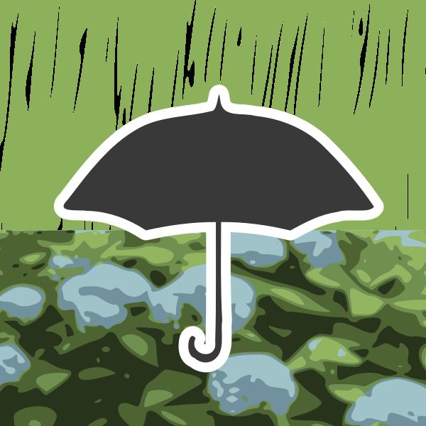 Rain in autumn
