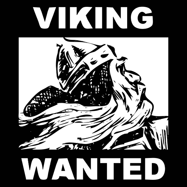 request Character 13 VIKING 2015072626