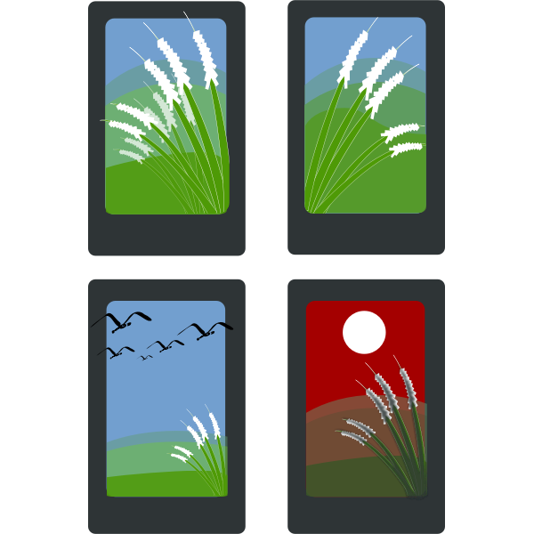 Vector drawing of summer idyll on four cards