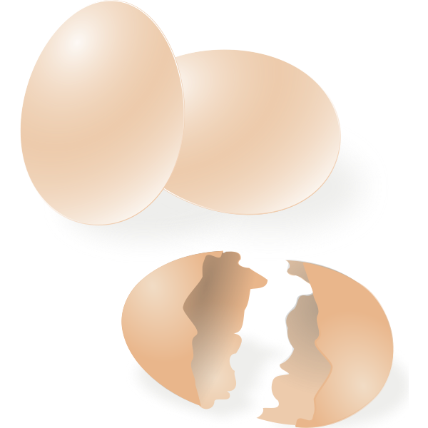 Broken and whole egg shell vector drawing