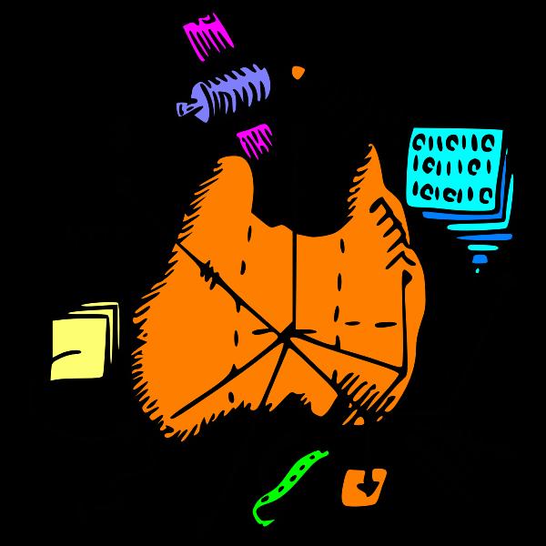 Digital map of Australia