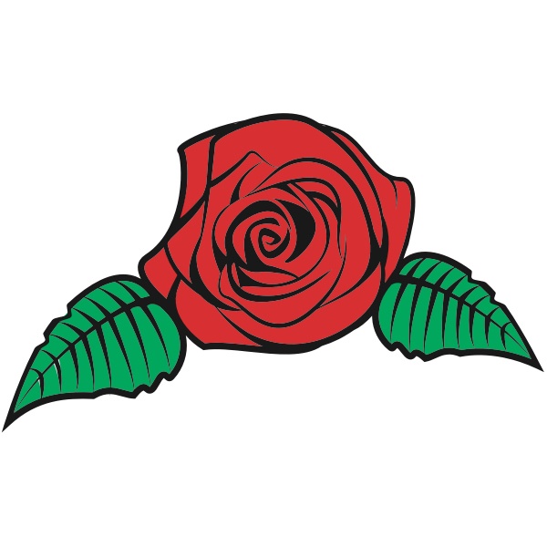 Rose-1574086436