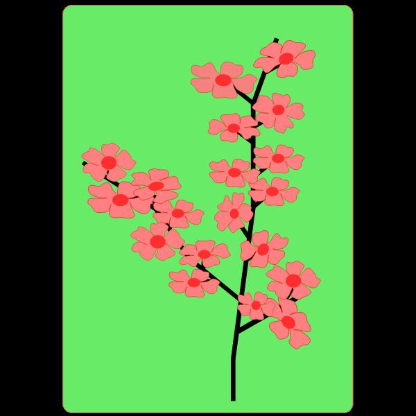 Flower, Flowers, Sakura