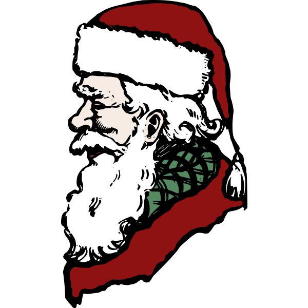 Santa Claus side profile in color vector drawing