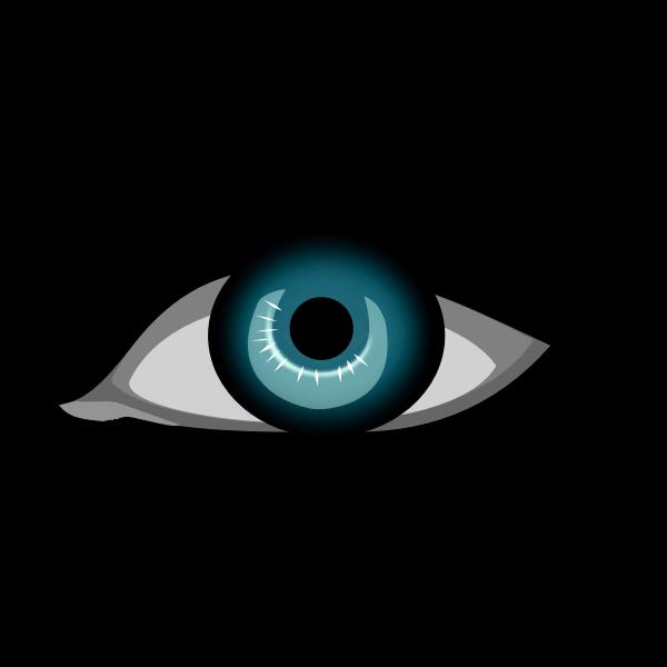 Blue female eye vector drawing