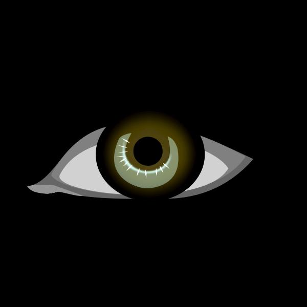 Brown eye vector image
