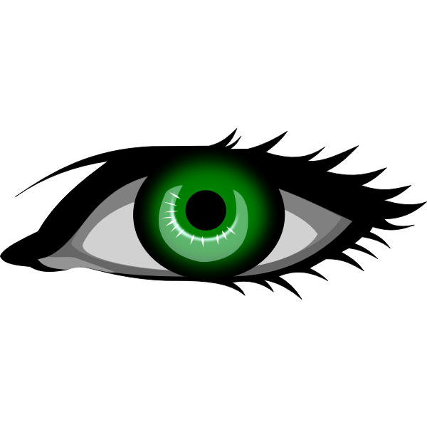 Dark green eye vector image