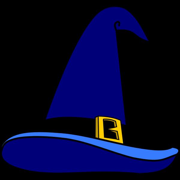 Wizards hat vector image