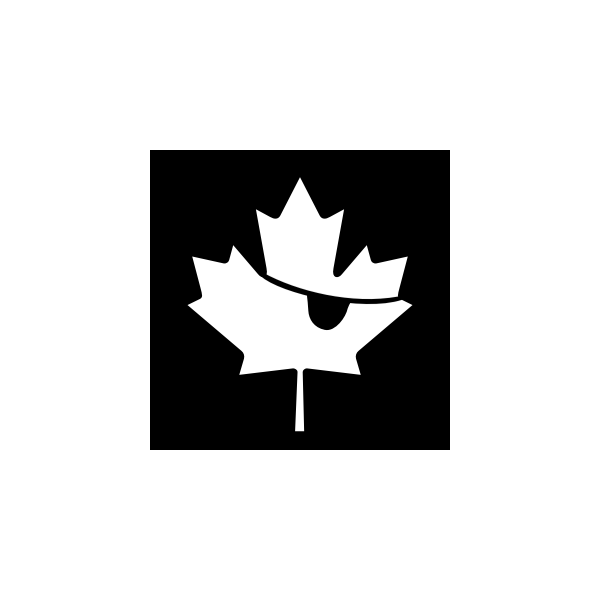 Vector graphics of pirate maple leaf