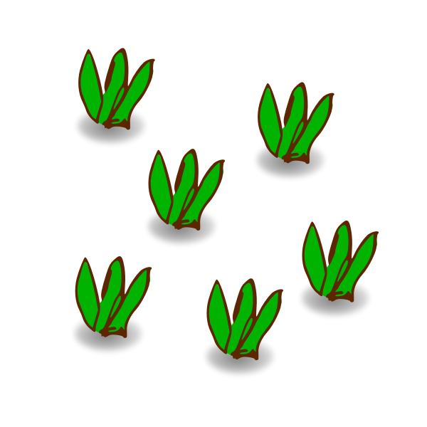 Leaves of grass vector drawing
