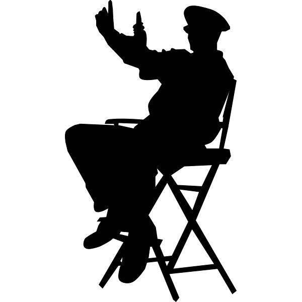 Director in chair