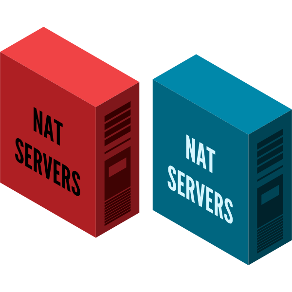 NAT server vector image