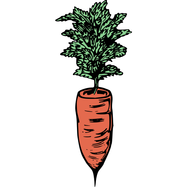 Simple carrot