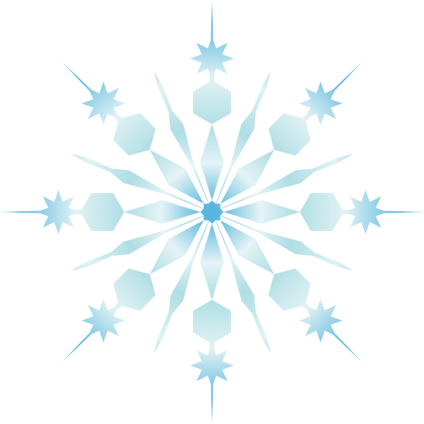 Snowflake art vector