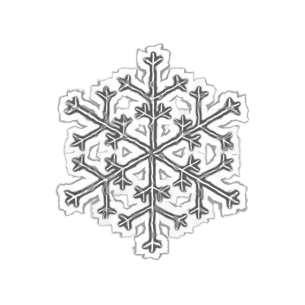 Vector clip art of grayscale snowflake