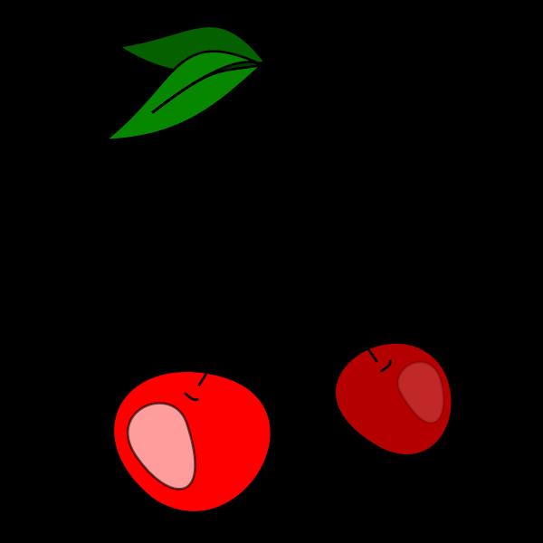 Cherries vector clip art
