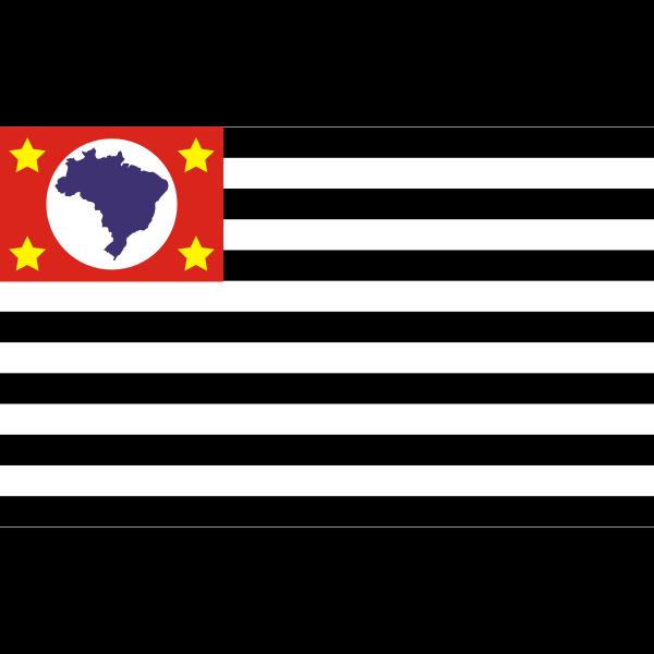 Bandeira de Sao Paulo flag vector image