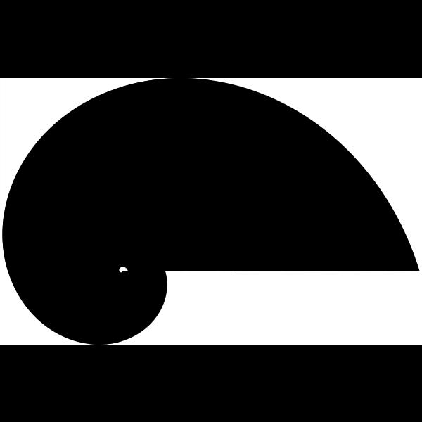 spiral 15
