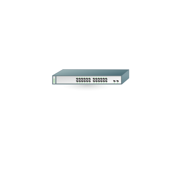 Graphics of simple networking router with 24 switches