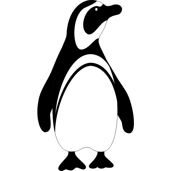 Penguin bird vector