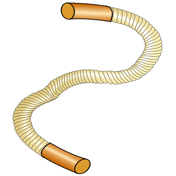 Thick sports rope vector image