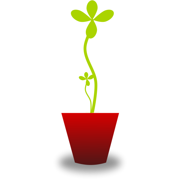 Vector drawing of tender green plant in red pot