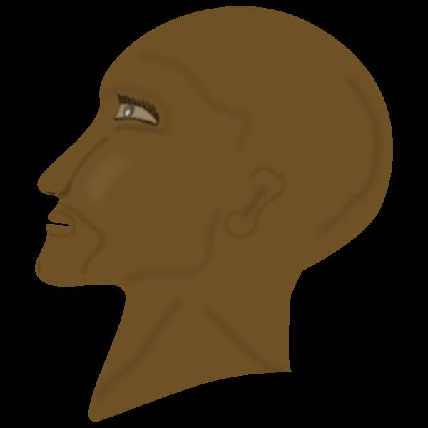 testa di moro