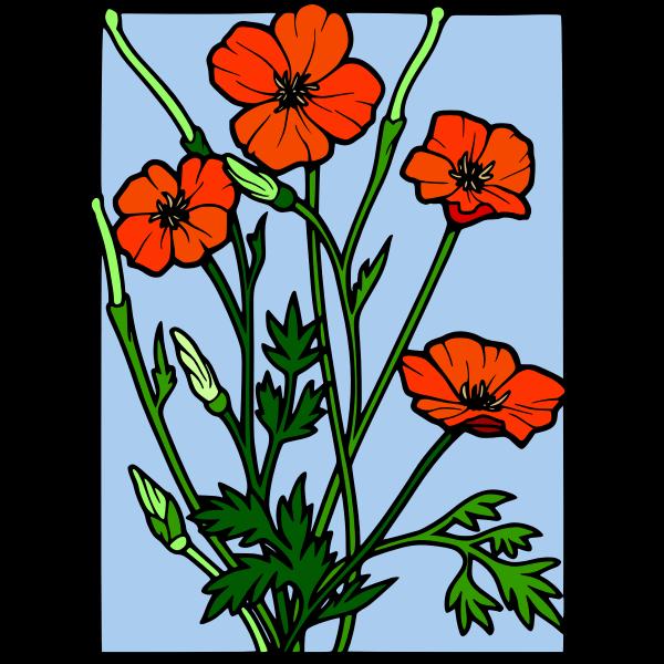 olor poppy frame vector drawing