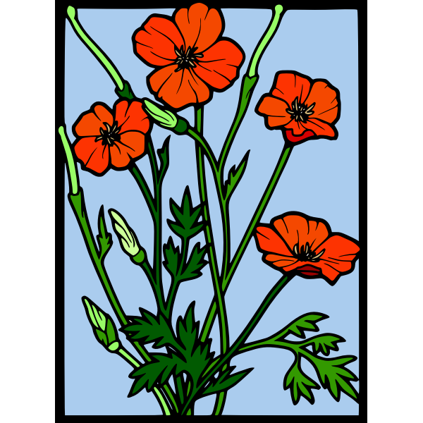 olor poppy frame vector drawing