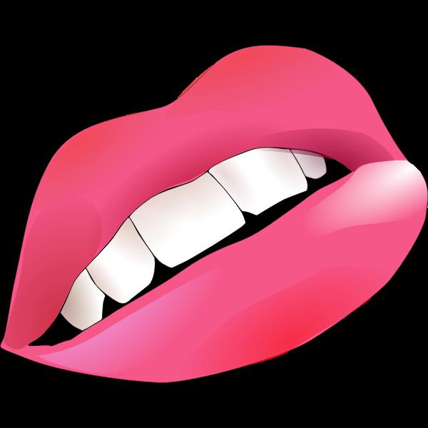 Vector graphics of lips