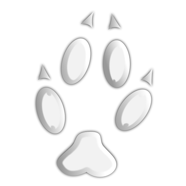 Footprint of wild animal