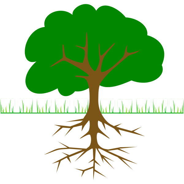 Tree branches and root vector drawing