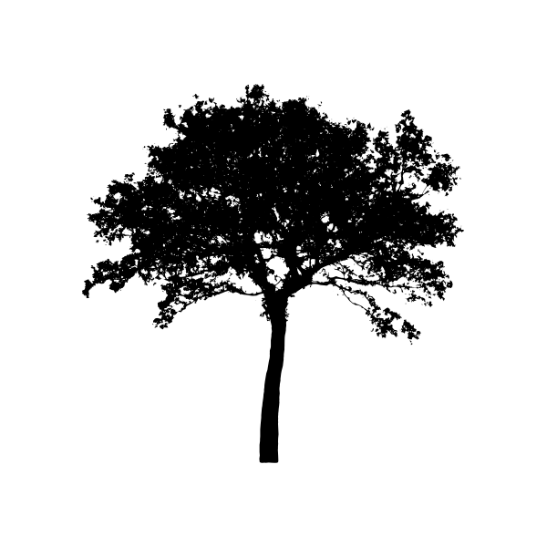Silhouette vector clip art of open tree top