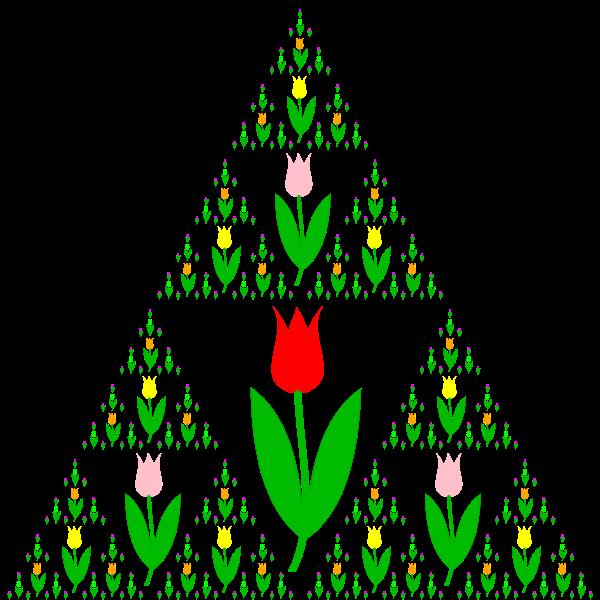 Tulip fractal