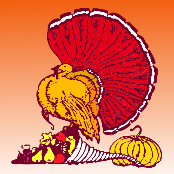 Thanksgiving turkey and veggies