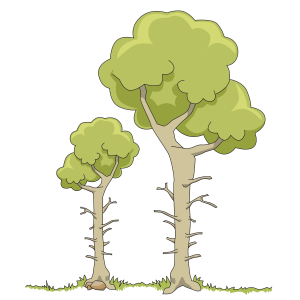 Two forest trees