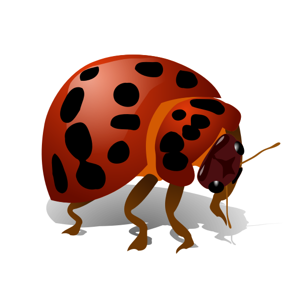 Bug vector