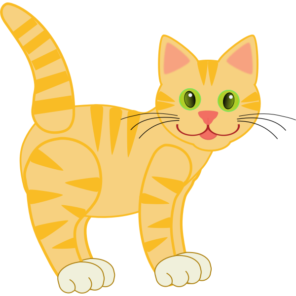 A tiger cat