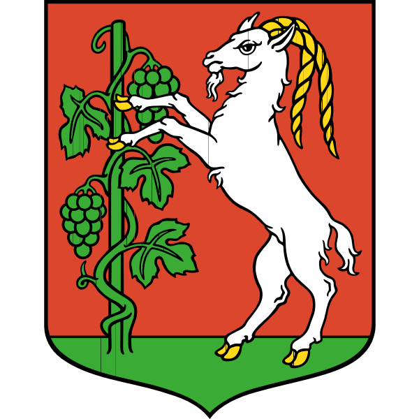 Vector drawing of coat of arms of Lublin City