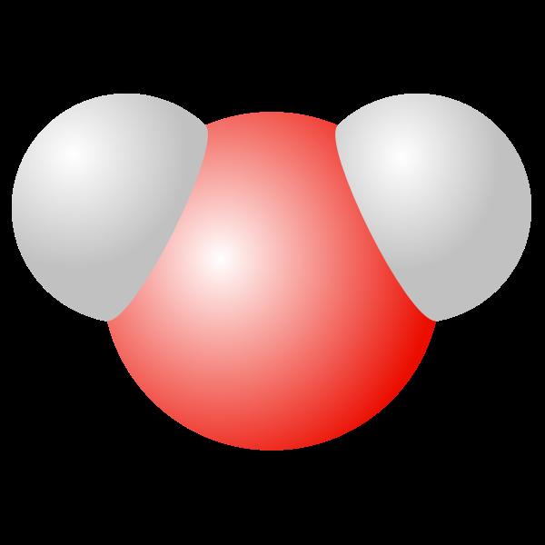 Water molecule vector drawing