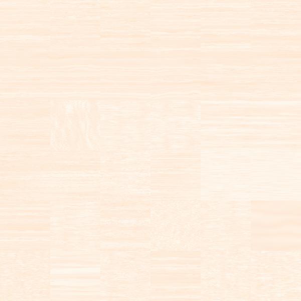 Wood grain pack vector image