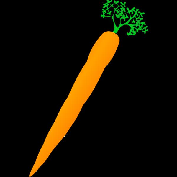 Vector image of orange carrot
