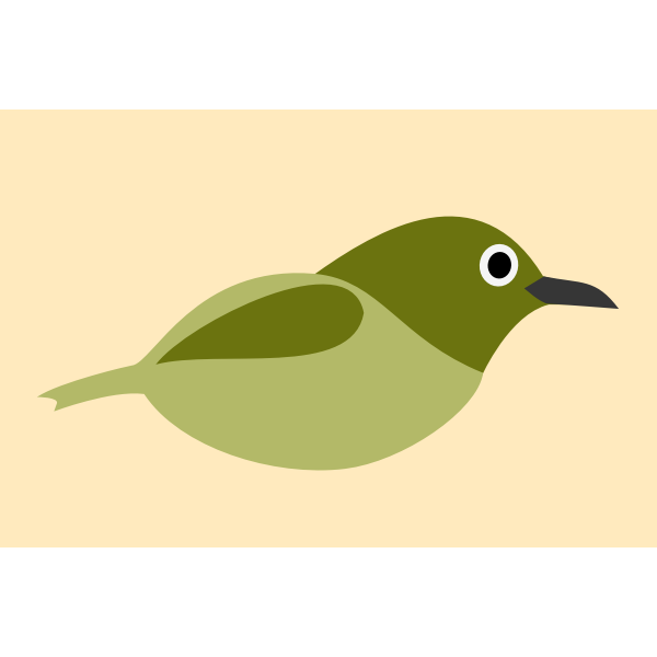 Graphics of white-eyes bird without legs