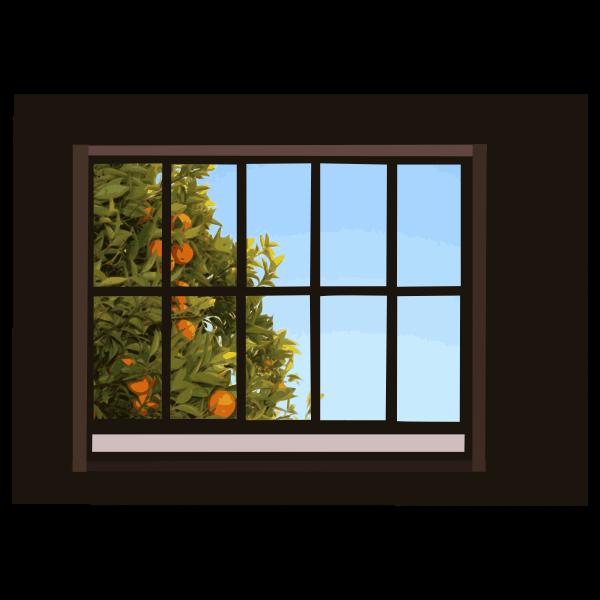 window with orange tree