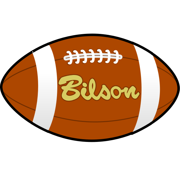 Bilson rugby ball vector image