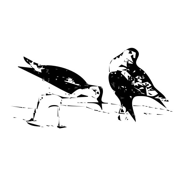 Silhouette vector illustration of birds