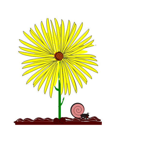 Image of yellow flower and a snail